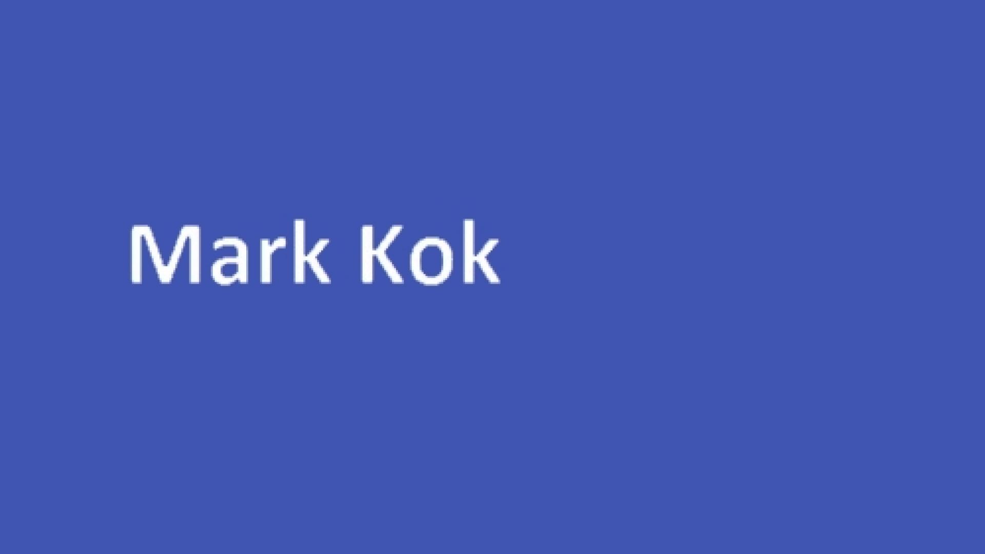 Mark - grijs - hover 2